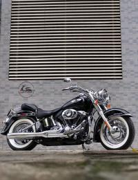 HD Softail Deluxe  29A1-019.22 (01)